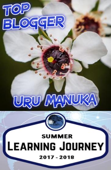 1st Place Summer Blogging Challenge