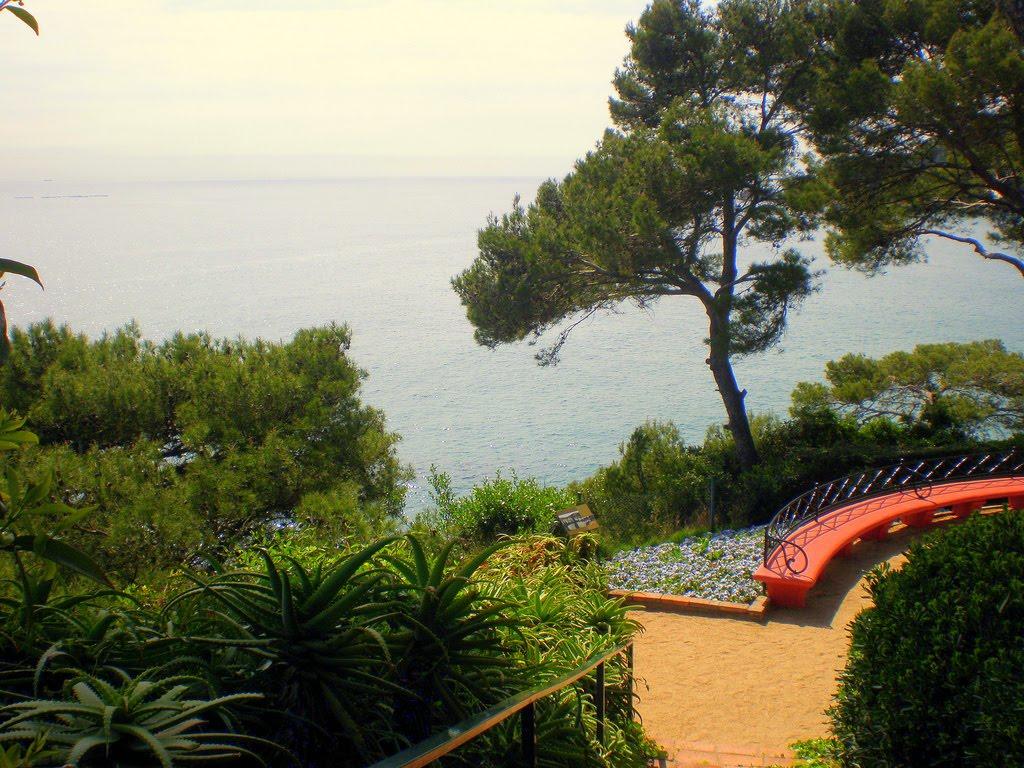 Španija  Floret-del-mar-13