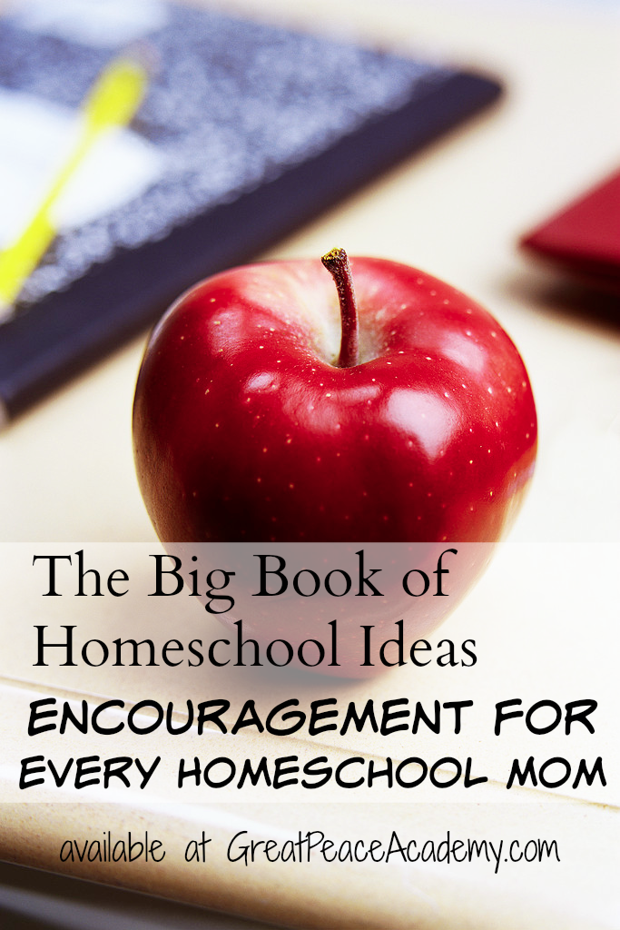The Big Book of Homeschool Ideas, Encouragement for Every Homeschool Mom