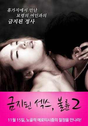 Forbidden Sex 2 Affair (2012)
