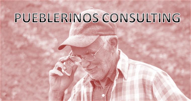 Pueblerinos Consulting