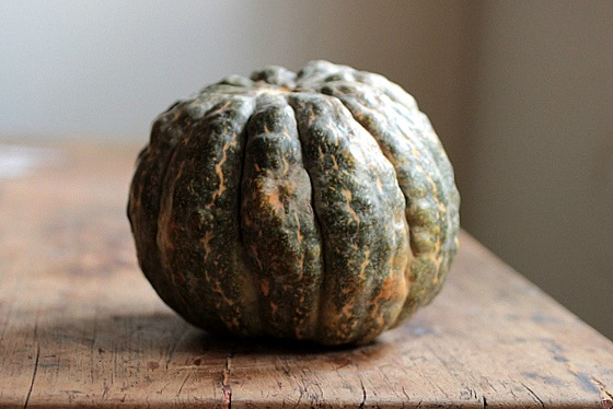 Roasted Pumpkin with Goat Cheese, Thyme and Sage