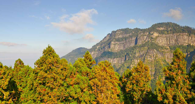 AliShan National Park