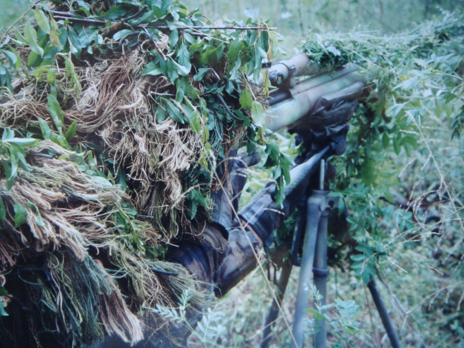 "the sniper assignment Students will read the short story ""the sniper"" personal letter writing assignment review parts of a personal letter personal letter writing assignment."