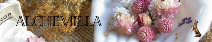 ALCHEMILLAのウェブサイト
