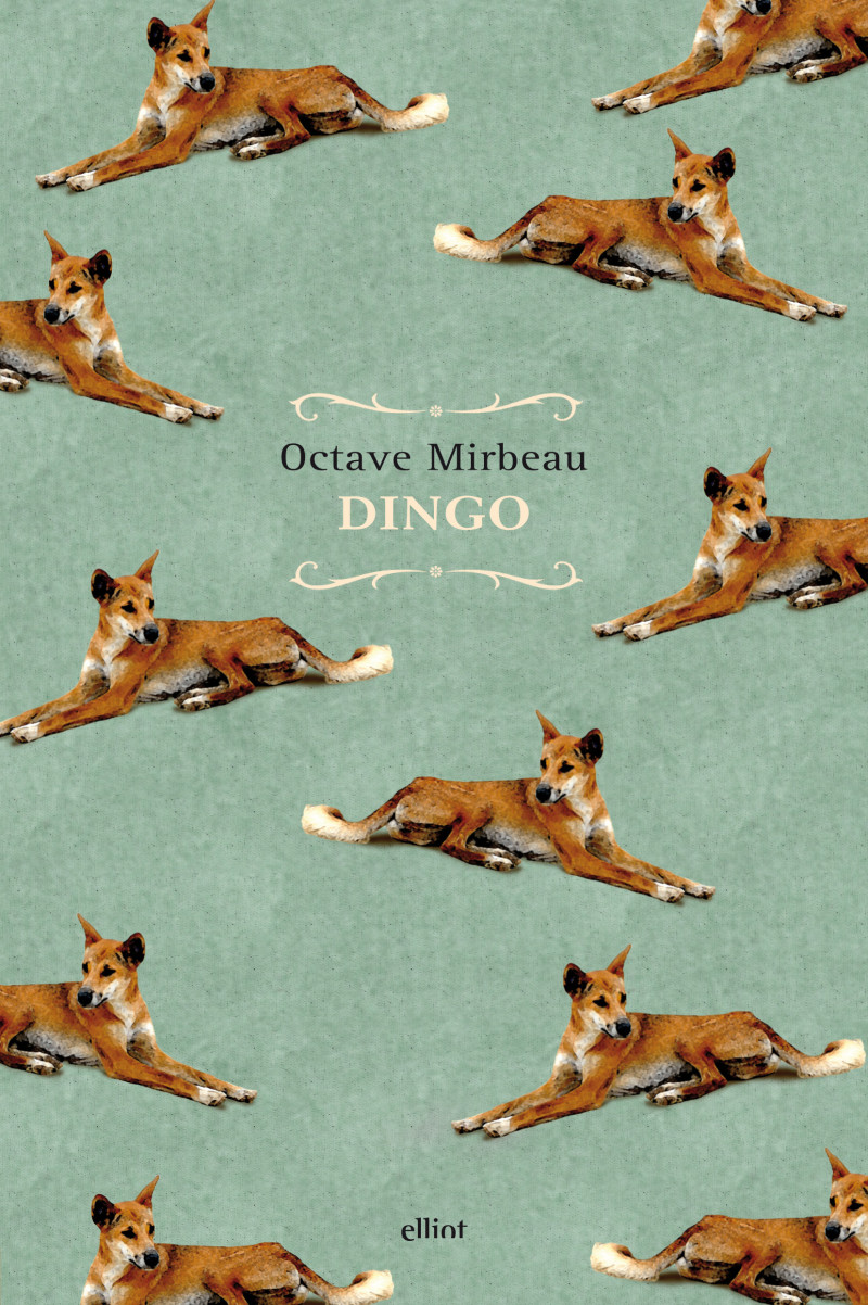 "Traduction italienne de ""Dingo"", février 2017"