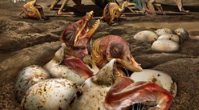 Μεγάλη ανακάλυψη στην Κίνα: Βρήκαν 215 αβγά πτεροσαύρων και κάποια έχουν έμβρυο