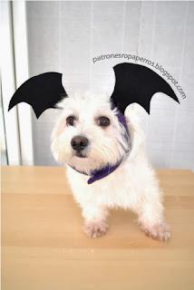 sombrero de murcielago para perro