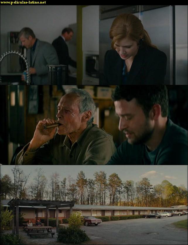 Imagen 1 Curvas de la vida película brrip latino 2012