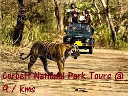 Jim Corbett National Park Tour Packages