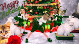 ElfYourself Fun Video
