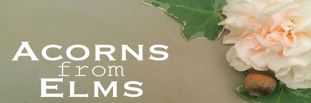 Acorns from Elms