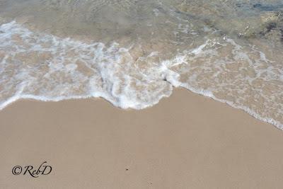 vattenbryn, sandstrand. foto: Reb Dutius