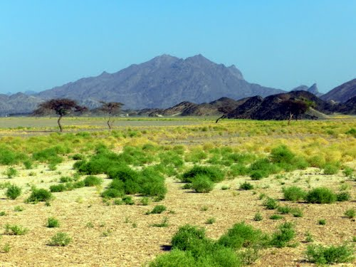 محمية وادي الجمال الساحرة