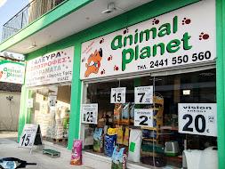 animal planet 3