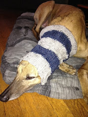 Ready-made Greyhound Snoods available!