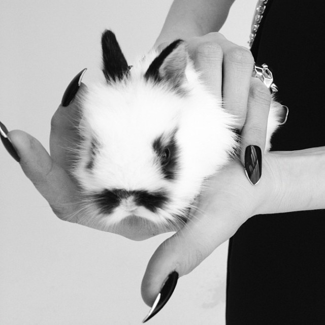 Cara Delevingne, Nick Knight, Pussycat, editorial, SHOWStudio, Instagram, Fabergé, Van Cleef and Arpels, Cartier