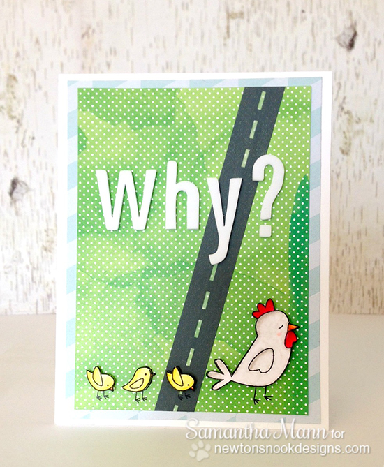 Why did the Chicken card by Samantha Mann for Newton's Nook Designs | Chicken Scratches Stamp