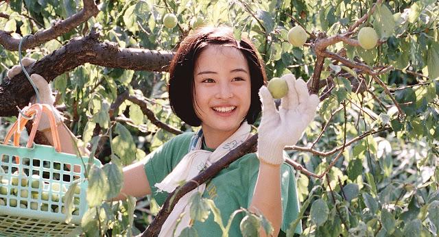der cineast Unsere kleine Schwester Suzu im Pflaumenbaum
