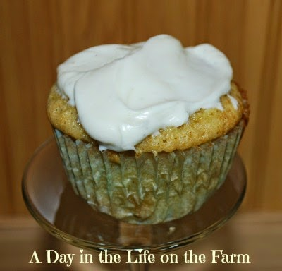 Day in the Life on the Farm: Spiced Parsnip Cupcakes for Crazy ...