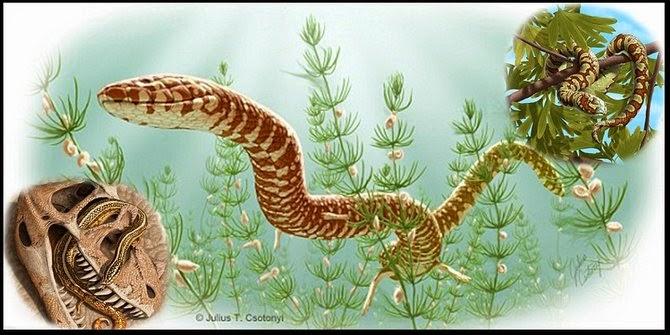 Fakta Unik Tentang ular pertama di dunia