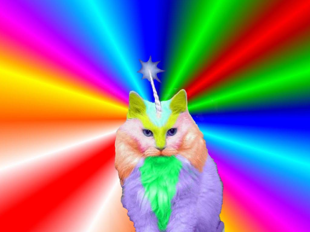 rainbow cat wallpapers - photo #11