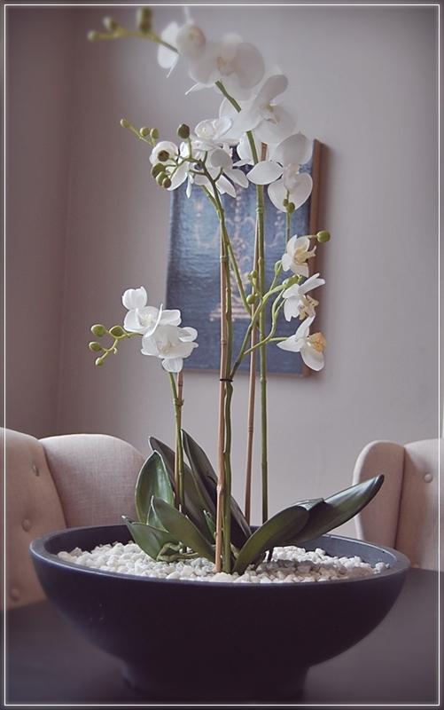 falsk orkide