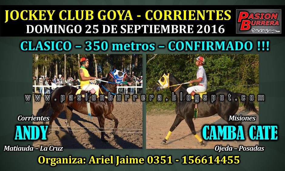 GOYA - 25 - 350