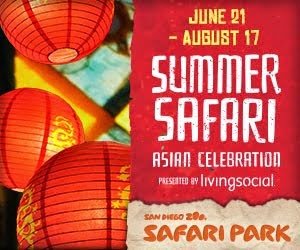 Summer Safari is Back!