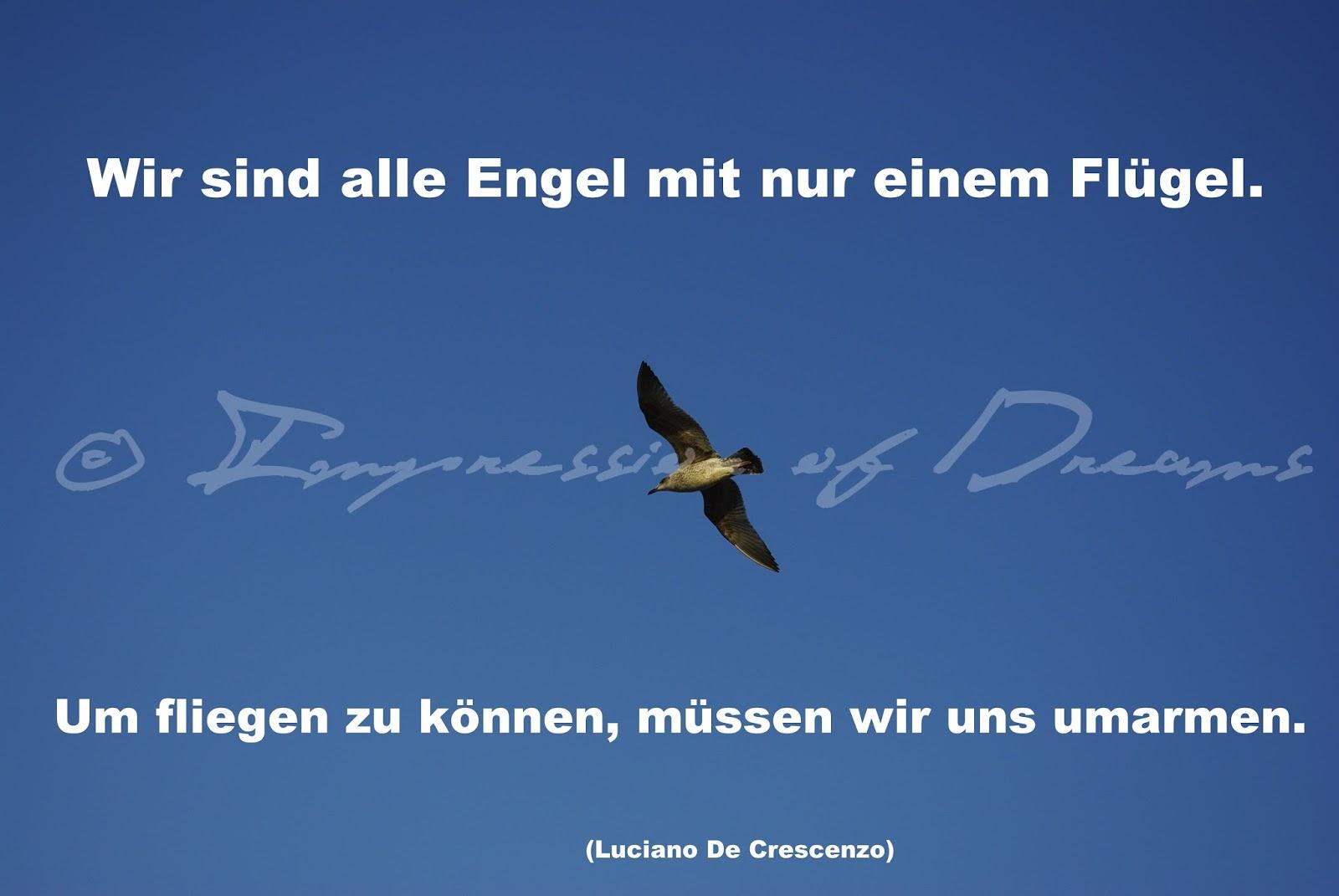 Wir sind alle Engel mit nur einem Flügel. Um fliegen zu können, müssen wir uns umarmen.