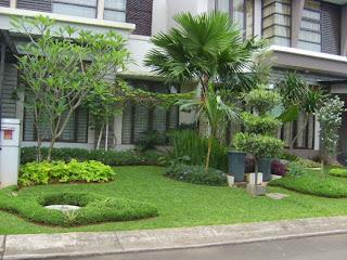 Rumah Minimalis Dengan Taman Yang Indah