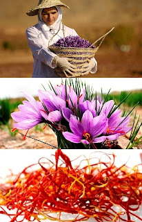 How to Grow Your Own Saffron Farming Business(জাফরান চাষ)