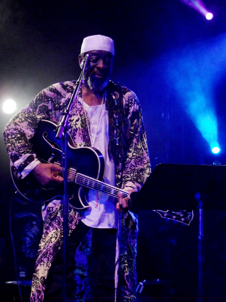 James blood Ulmer 2011