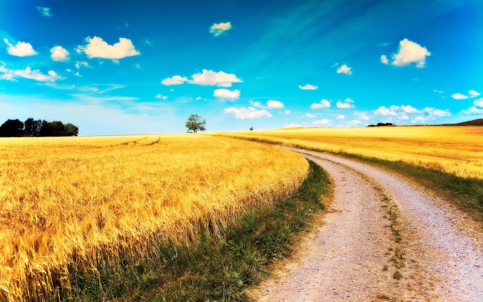 Nature desktop backgrounds nice wallpapers for Natural landscape