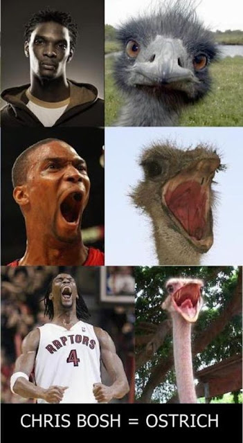 chris bosh look alike animal