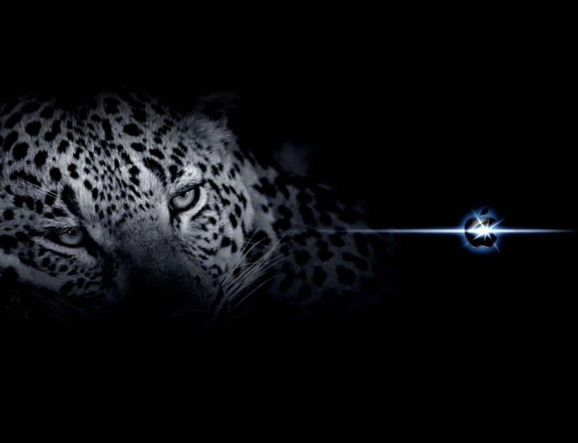 Vuze Download Mac Snow Leopard
