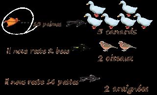 solution enigme calcul nombre canards oiseau araignées 7 becs 30 pattes 10 palmes