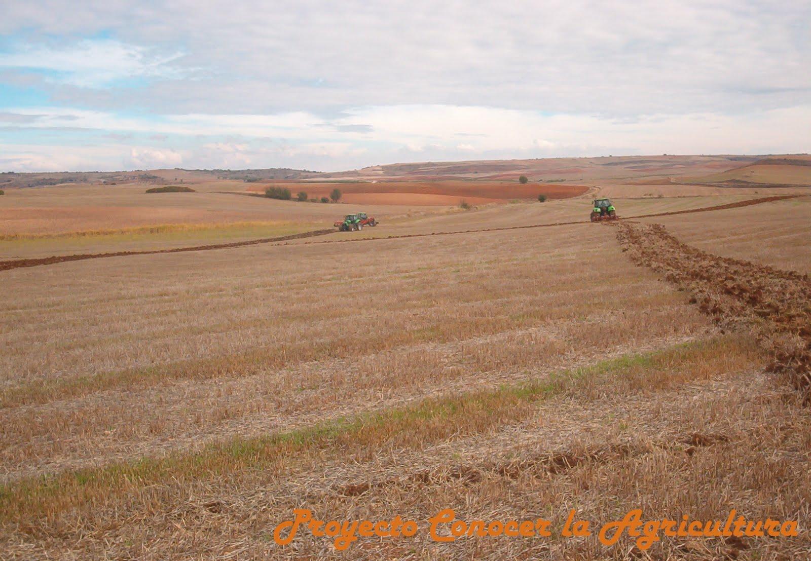 Abeceagrario suelo conocer la agricultura y la ganader a for A que se denomina suelo