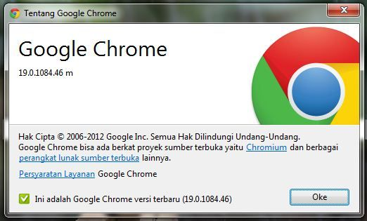 Add On Chrome Flash Video Downloader