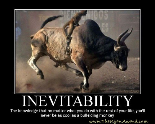 Funny Motivational Poster - Bull Rodeo