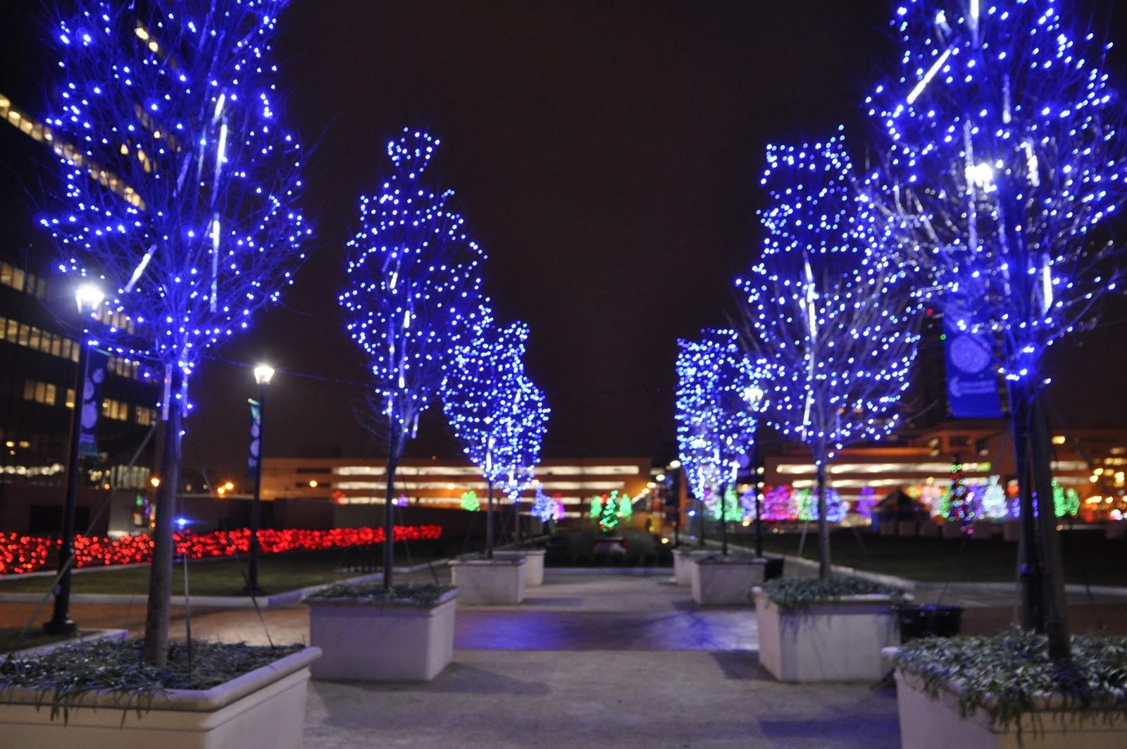 Columbus Christmas Lights | Thinking Outside the Boxwood