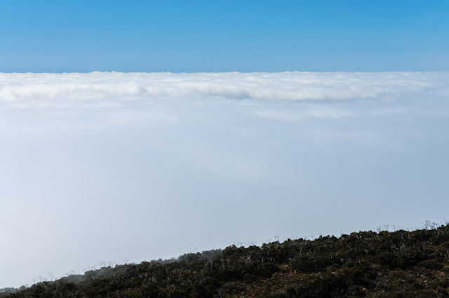 cloud layer from mount william summit
