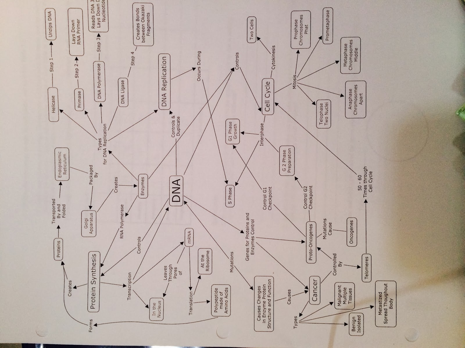 we also made this mindmap to help us review for the test mr quick also told us what was on the test today