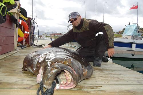 Attrezzatura da pesca in norvegia