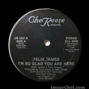 FELIX JAMES - I'm So Glad You Are Here