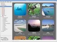 Instalar Shotwel 0.10.1 en Ubuntu