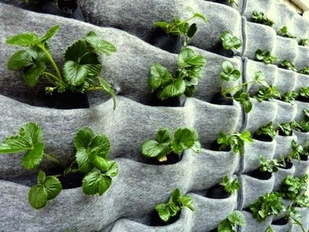 10 ideas para jardines verticales - Ikea plantas artificiales ...