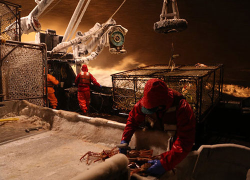 This is the link of the image: http://dsc.discovery.com/tv-shows/deadliest-catch/photos/seabrooke-pictures-2013.htm