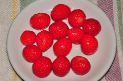 Frische Erdbeeren...