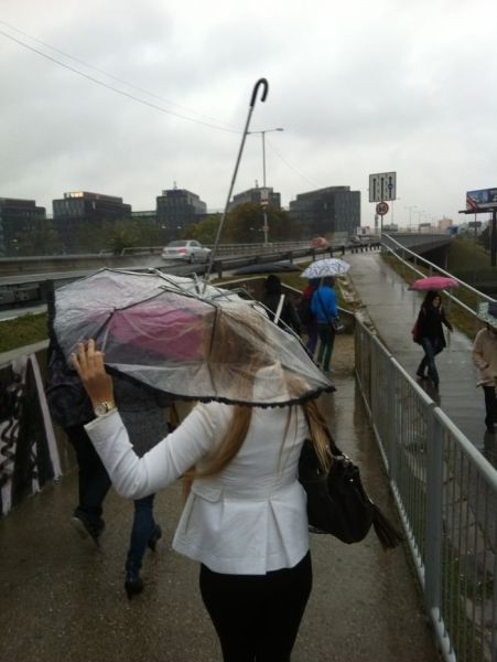 How Blonds Hold An Umbrella